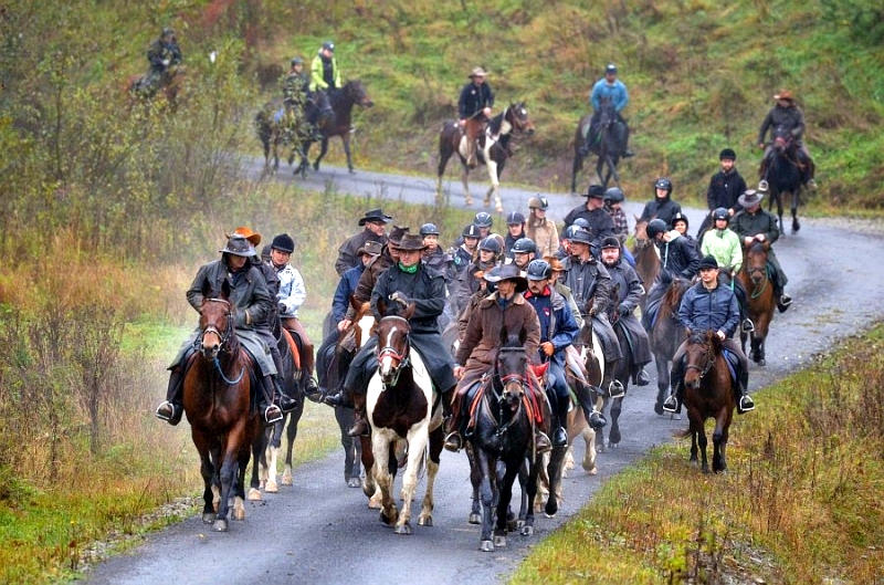 regietów stadnina koni huculskich (13)