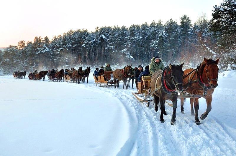 regietów stadnina koni huculskich (14)