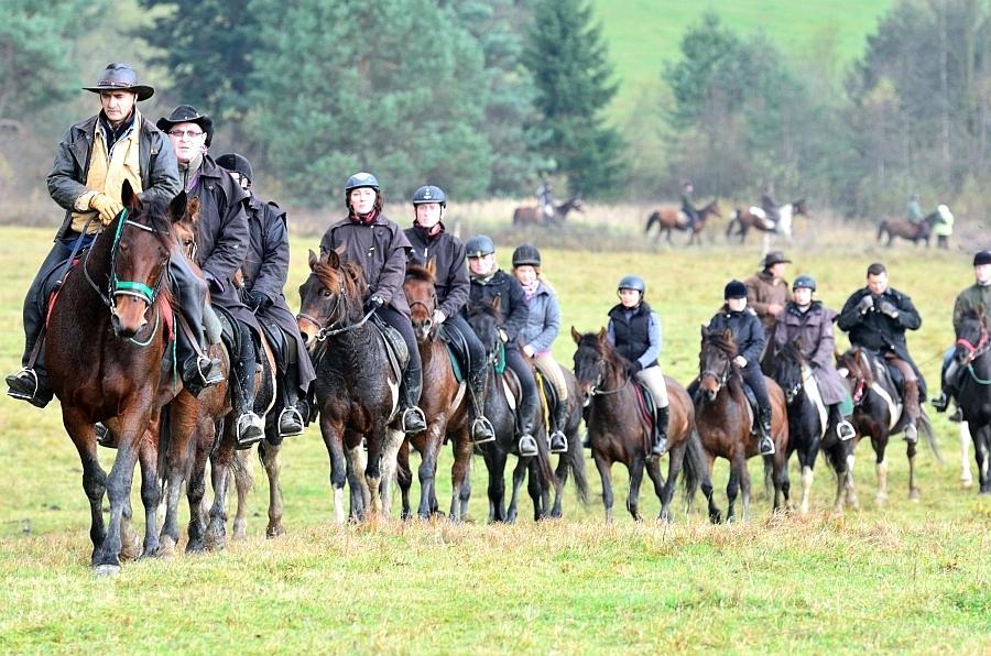 rekreacja konna stadnina koni huculskich gładyszów (9)