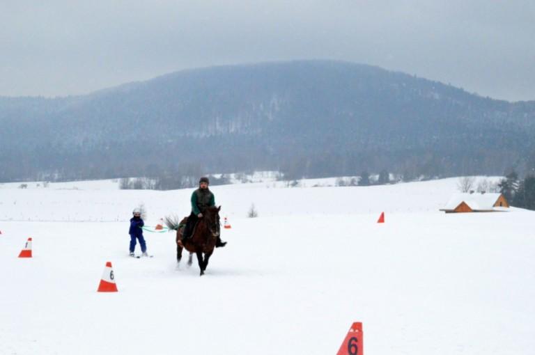 2016 Zimowe zawody (7)