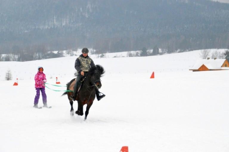 2016 Zimowe zawody (9)