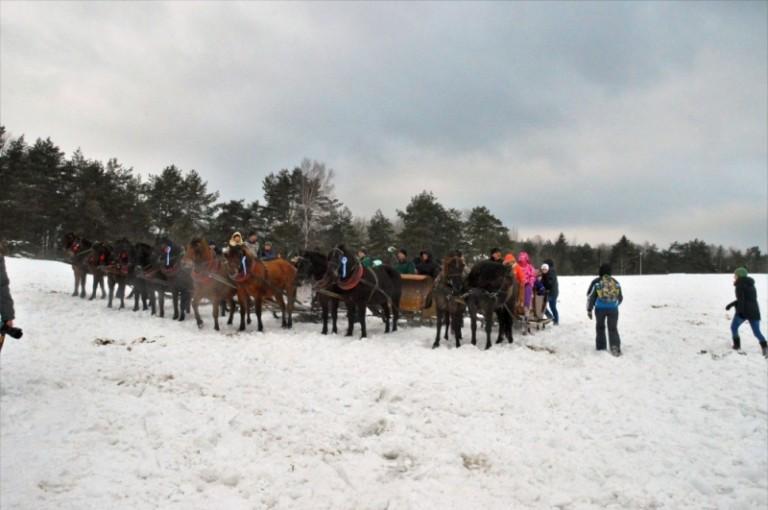 2016 Zimowe zawody (47)