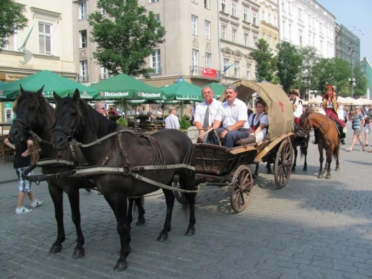 Cepeliada Kraków (1)