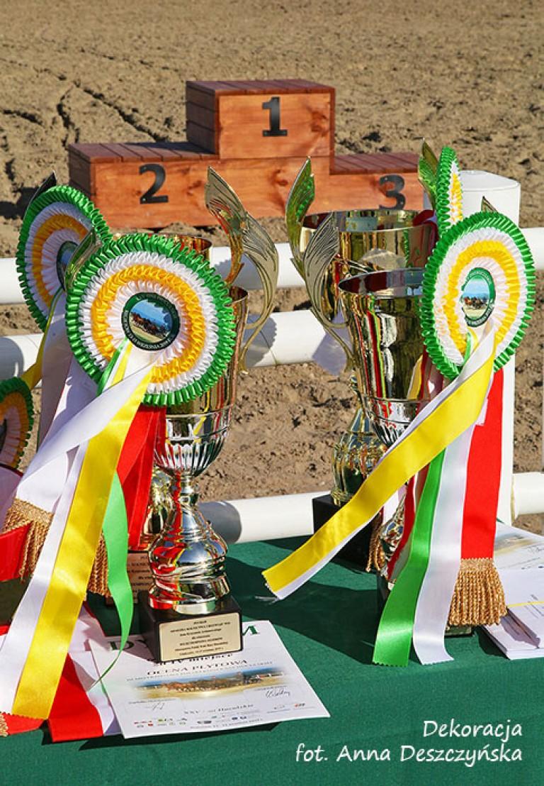 092_2507puchary_podium