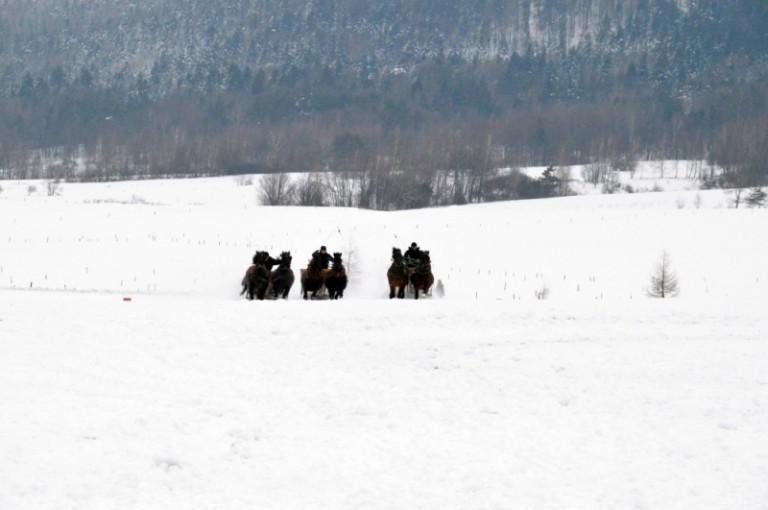 2016 Zimowe zawody (44)