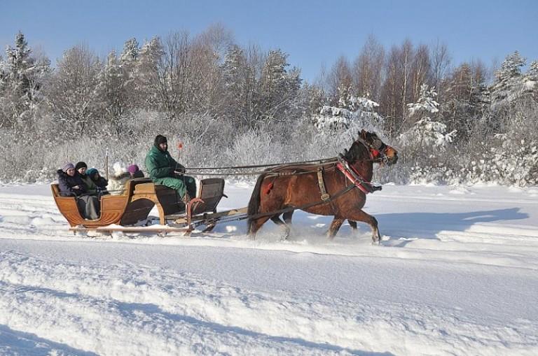20102011 Sezon Kuligowy (4)