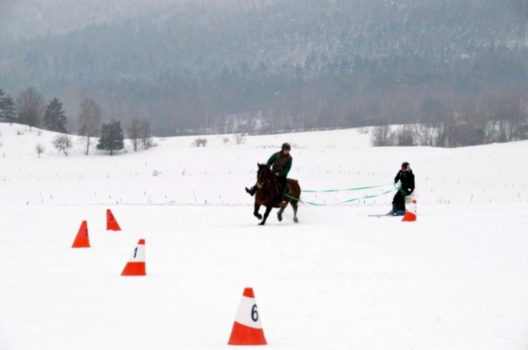 2016 Zimowe zawody (16)