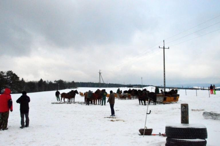 2016 Zimowe zawody (29)