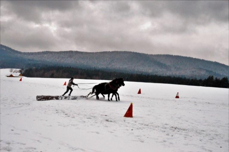 2016 Zimowe zawody (25)