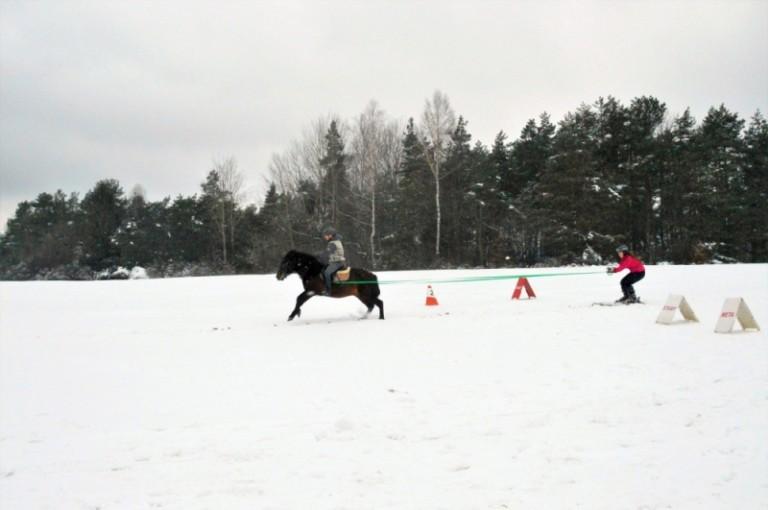 2016 Zimowe zawody (14)