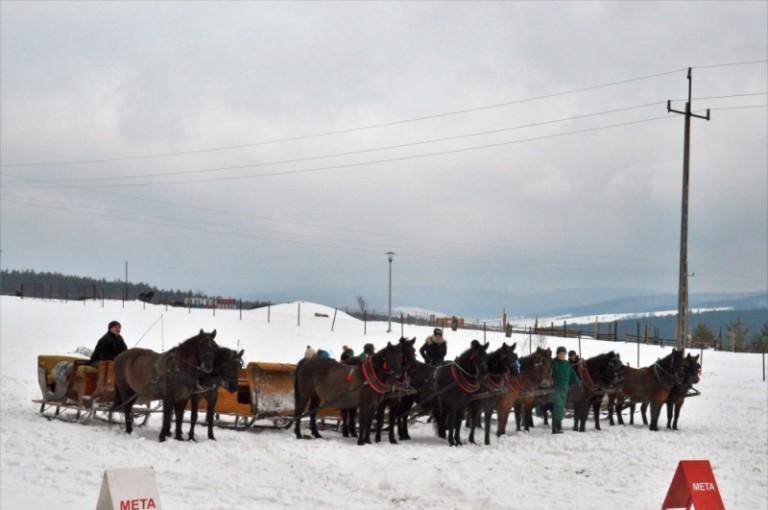 2016 Zimowe zawody (36)